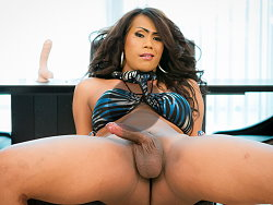 free ladyboy69 videos misty